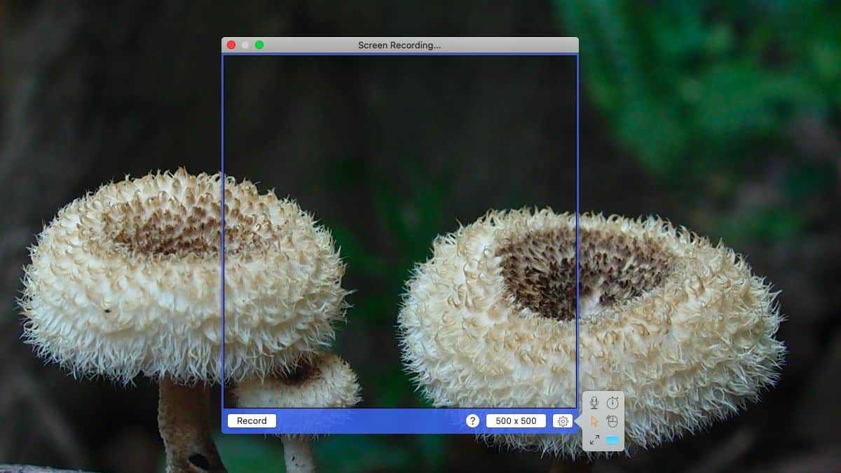 how to record gif screencasts on macos 1 How to record GIF screencasts on macOS