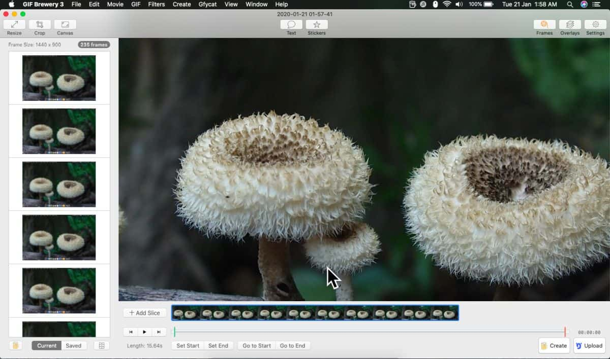 how to record gif screencasts on macos 2 How to record GIF screencasts on macOS