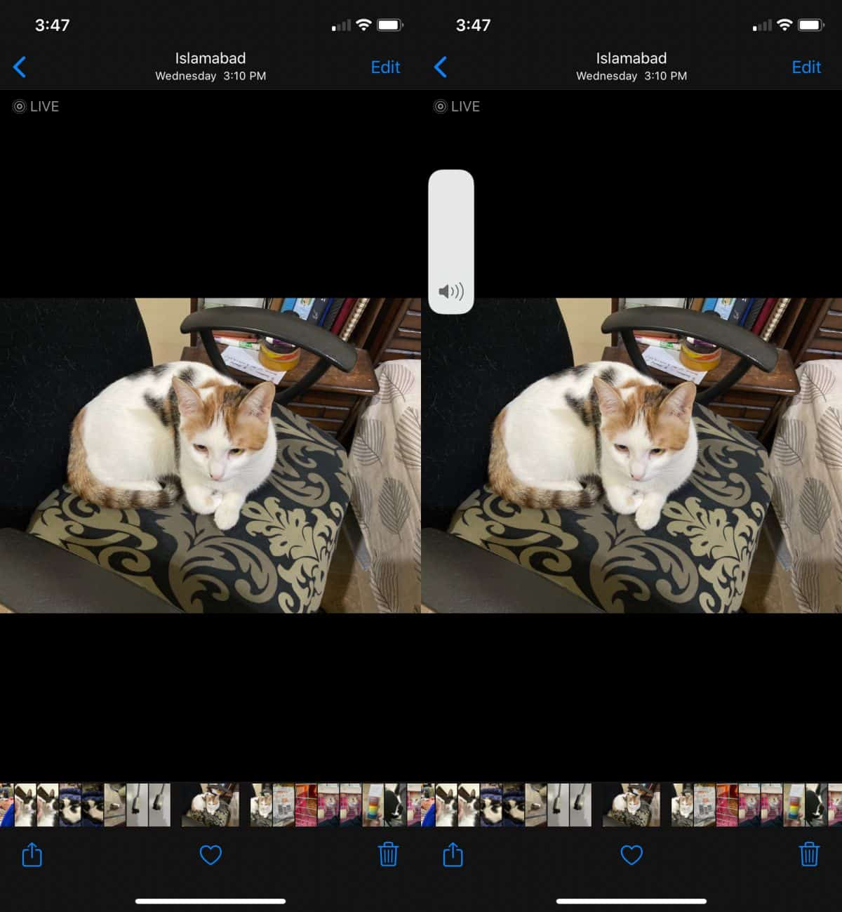 how to hear the sound recorded with a live photo on ios How to hear the sound recorded with a live photo on iOS