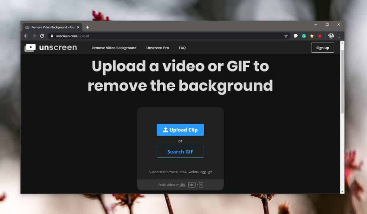 how to remove the background from a gif How to remove the background from a GIF
