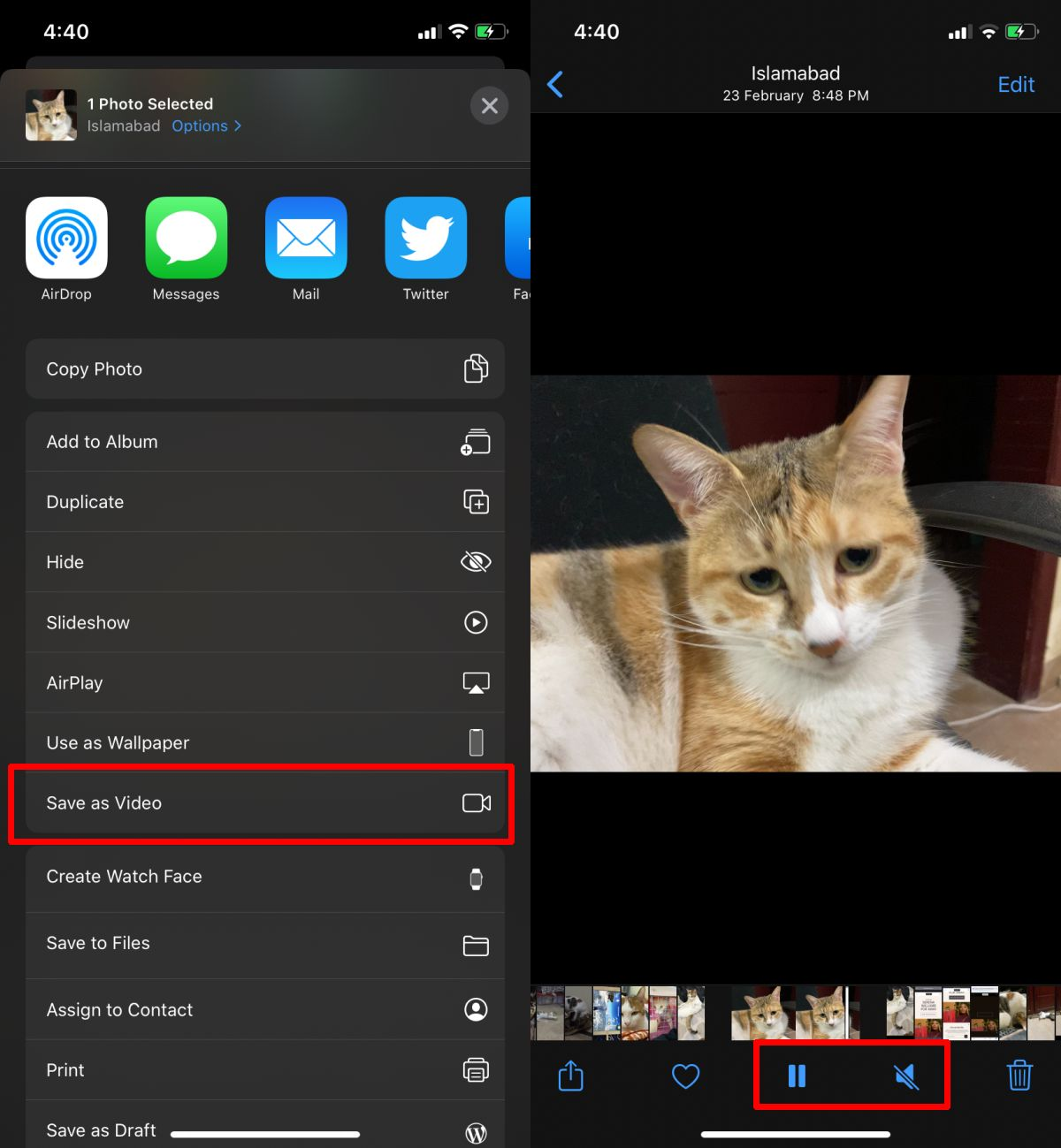 how to convert a live photo to a video ios 1 How to convert a live photo to a video [iOS]
