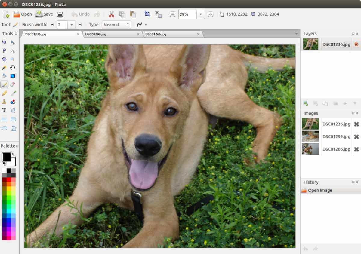 how to install the pinta image editor on How to install the Pinta image editor on Linux