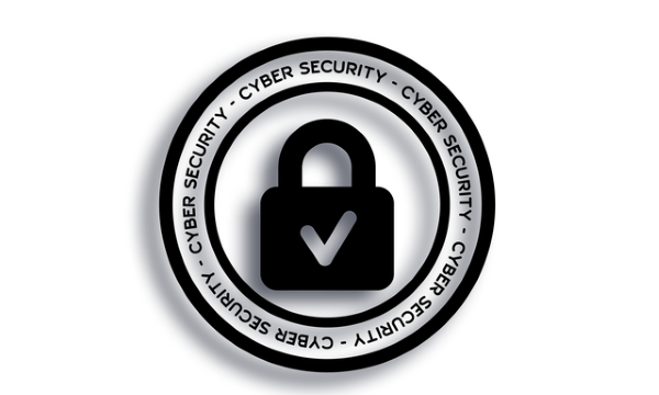 best cybersecurity practices for small business Morphea Cybersecurity Practices higher Pocket-size Gala