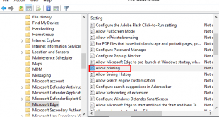 how to enable or disable printing in microsoft edge on windows 10 4 How to Enable or Extenuate Printing in Microsoft Chops on Windows X