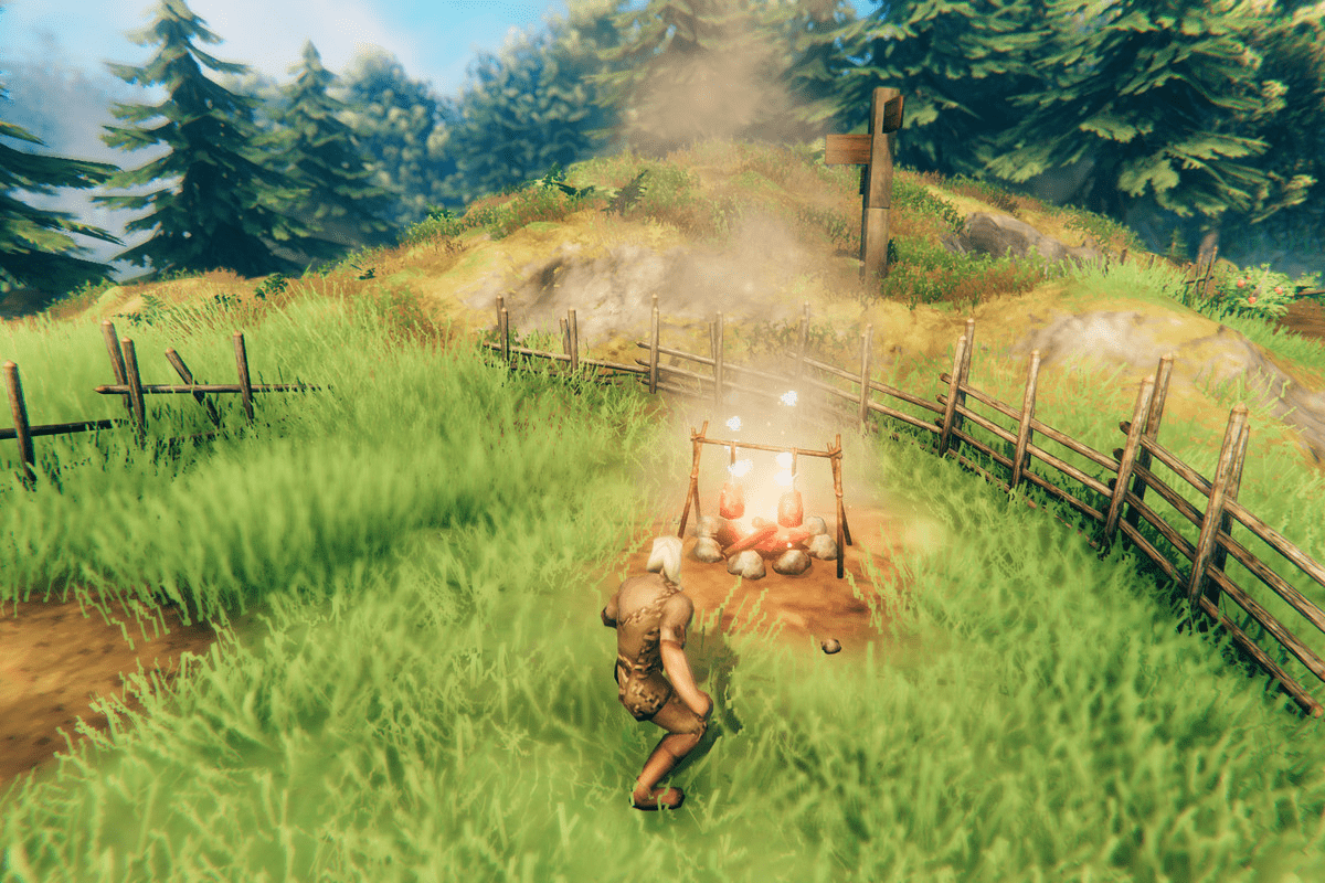 Valheim on Linux