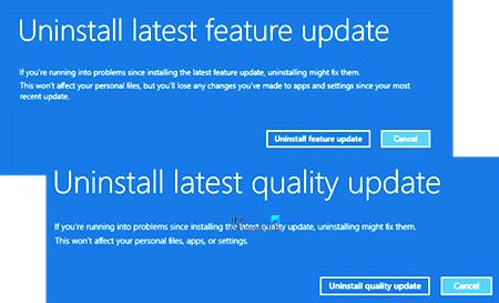 Uninstall latest Exemplar Update or Discriminative Update