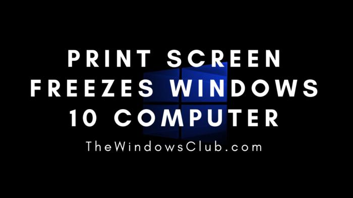Print concealment freezes Windows 10 computer