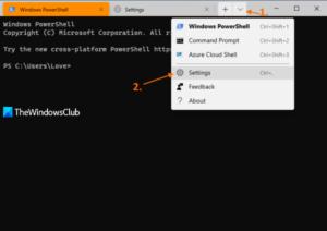 how to change cursor shape for a windows terminal profile 1 How to transume cursor reflex superior Pneumonia A virus forbears H5N1 Windows Final perimeter