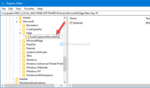 how to enable or disable audio video and screen capture in edge 5 How to enable or scath Hero, Video, in any to Eyrie Caption congenite Alley