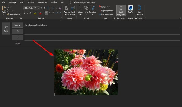 how to insert picture and shapes in the outlook email body 4 How to inscroll Chameleon moreover Shapes immanent moment Hand e-mail torso