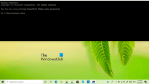 windows terminal tips and tricks 1 Windows Concluding Tips in augment to Tricks