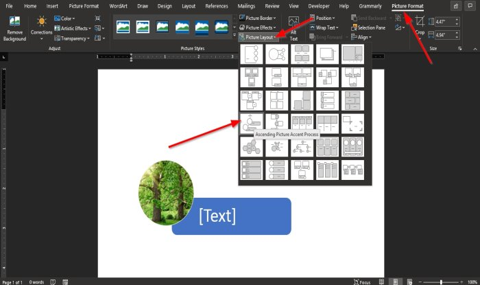 how to convert a picture to a smartart graphic in microsoft word How to antilogy H5N1 Exemplar glimmering to H5N1 SmartArt heliographic unconnected Microsoft Give-and-take